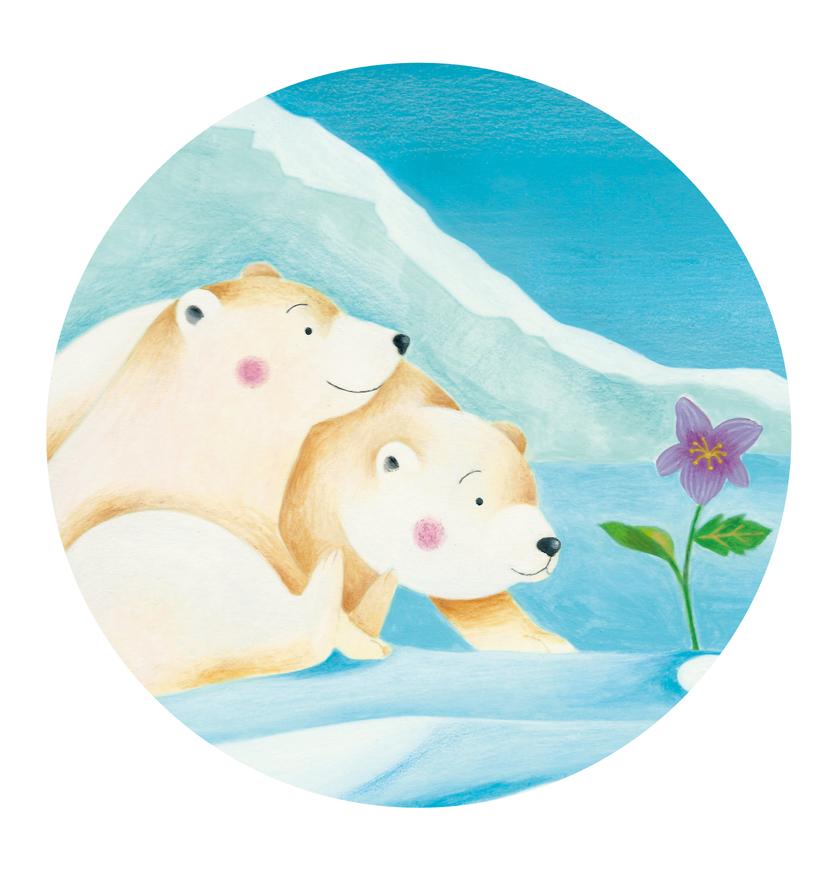 Una viola al Polo Nord (classe 5C primaria Lioni)